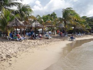 Grateful Dead Tribute Site - Beach View1