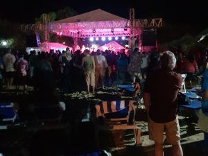 Grateful Dead Tribute Site - Stage View1